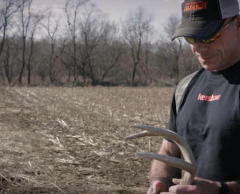 Shed hunting tips | Best Places To Find More Deer Sheds