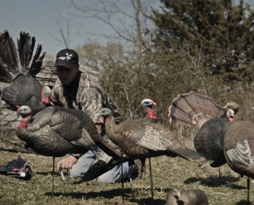 The Lone Decoy | If You Use Only One Turkey Decoy, What Is It