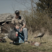 What Is The Best Time of Day to Hunt Turkeys
