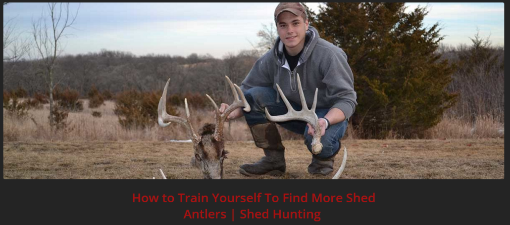 why-we-hunt-for-shed-antlers-Promo1
