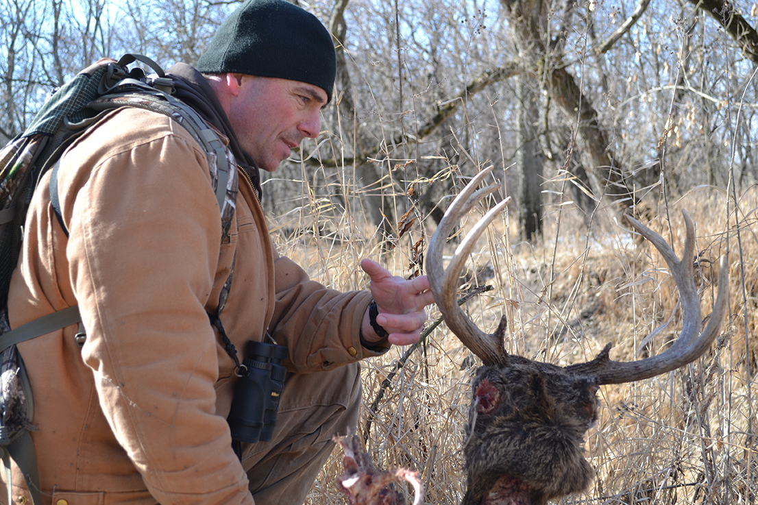 Why Do We Hunt For Shed Antlers Raised Hunting