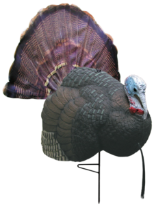 bow hunting turkey tips Raised Hunting